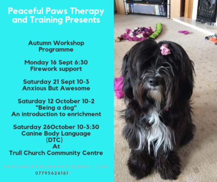 Peaceful Paws Therapy And Training
